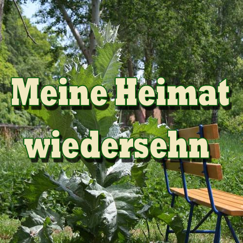Heimatlieder Cover