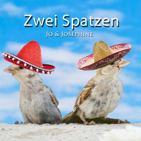 Samba Musik Cover Zwei Spatzen