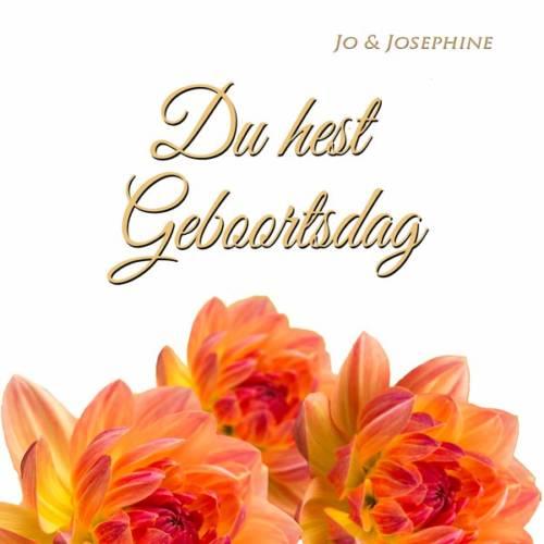 plattdeutsches Geburtstagslied Cover